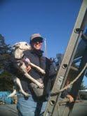Austin on the Ladder