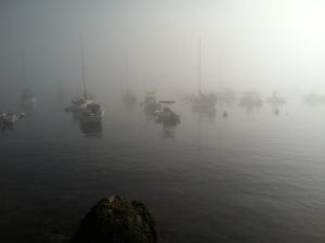 FogHarbor